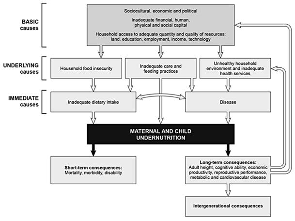 Soziokulturelle ökonomische und politische Determinanten von Mangelernährung
